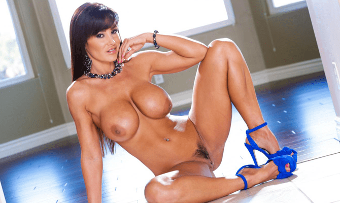 lisa ann fake tits